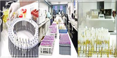 Nueva organización de Vithas Diagnóstico